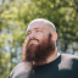 a pixelated portrait of myself. bearded, bald, male white person in front of some trees.